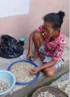 climatejustice-indonesia