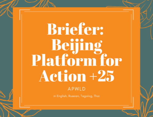 New Briefer: Beijing Declaration and Platform for Action (BPfA) and Beijing+25