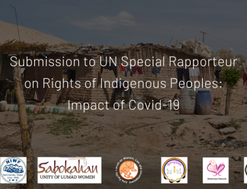 APWLD Submission to UN Special Rapporteur on Rights of Indigenous Peoples (UNSRIP): Impact of COVID-19 on Indigenous Peoples